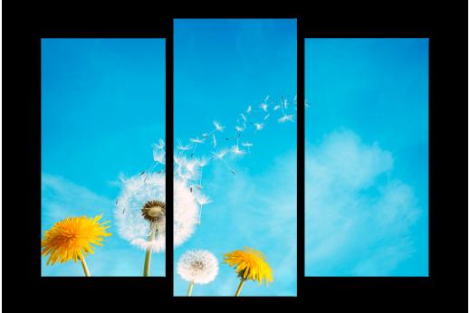 Модульная картина Жёлтый одуванчик на фоне неба