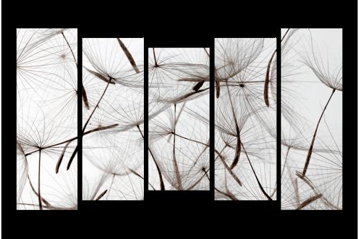 Модульная картина Белый одуванчик