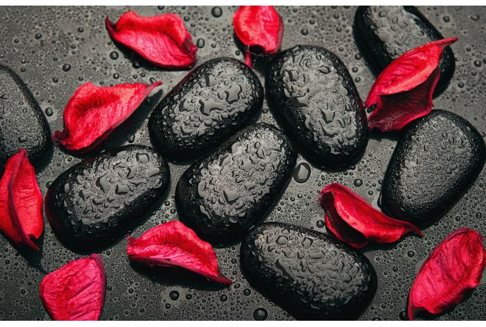 Модульная картина Черные камни красные лепестки