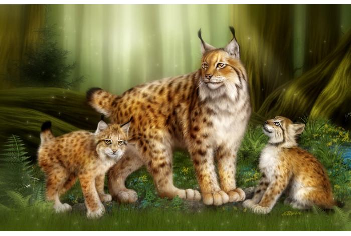 Модульная картина Семья рыси