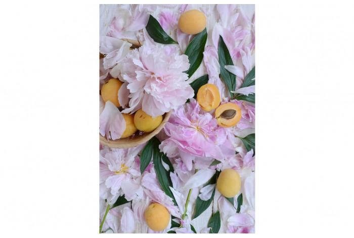 Картина Пион с абрикосами
