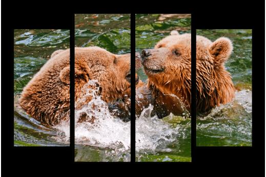 Модульная картина Медведи в воде